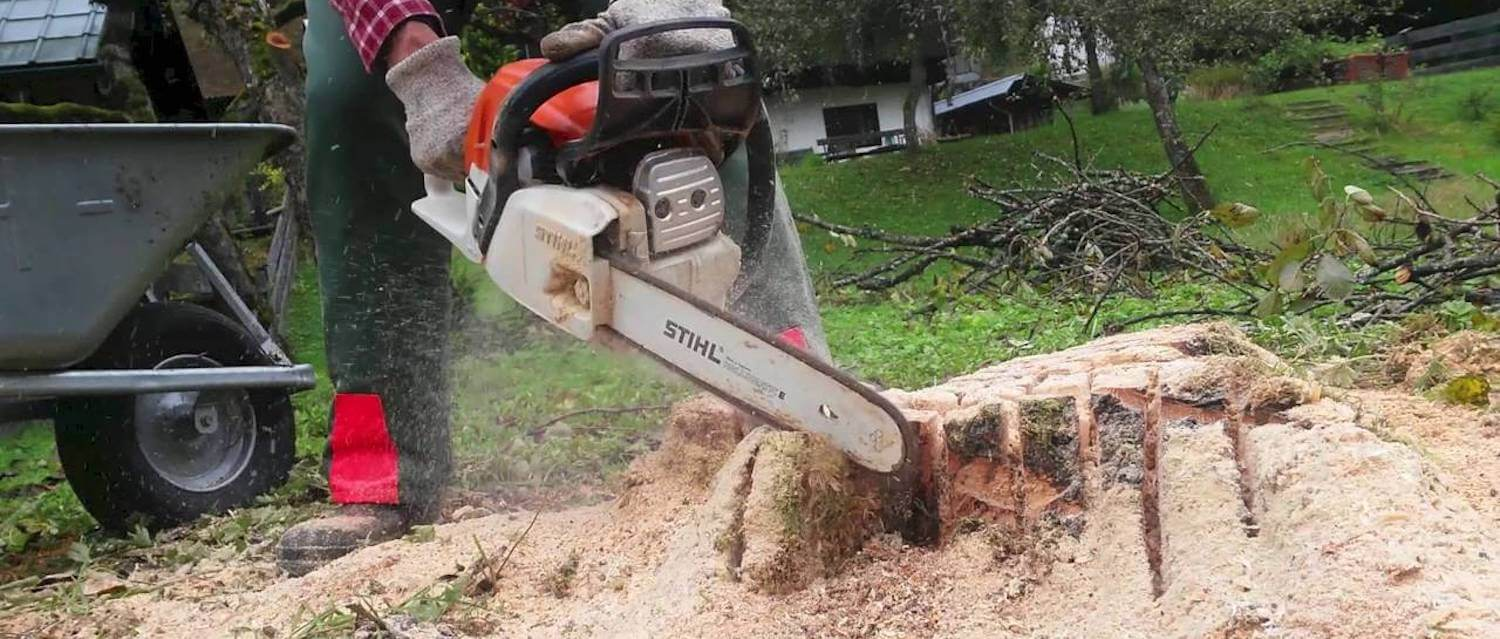 Stump Removal by Green Works Tree Care